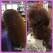 hareg-hair-salon-artist-campbell